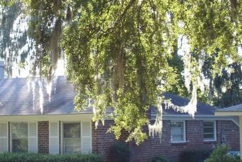Savannah-Home-350x235